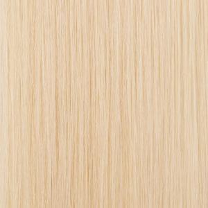 Clearly Blonde<br> Color#: 27<br> Description: Palest Blonde